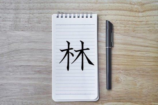 漢字の成り立ち「林」